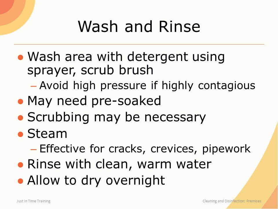 Wash and Rinse Wash area with detergent using sprayer, scrub brush