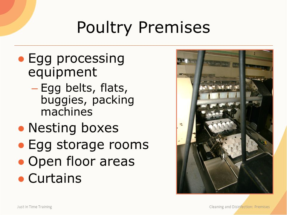 Poultry Premises Egg processing equipment Nesting boxes