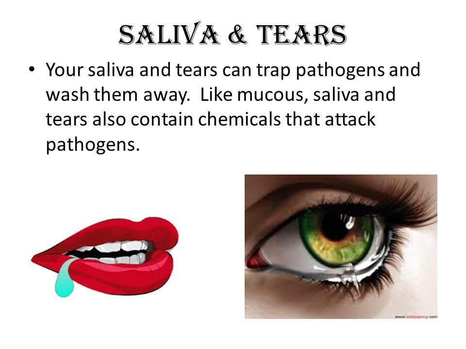 Saliva & Tears