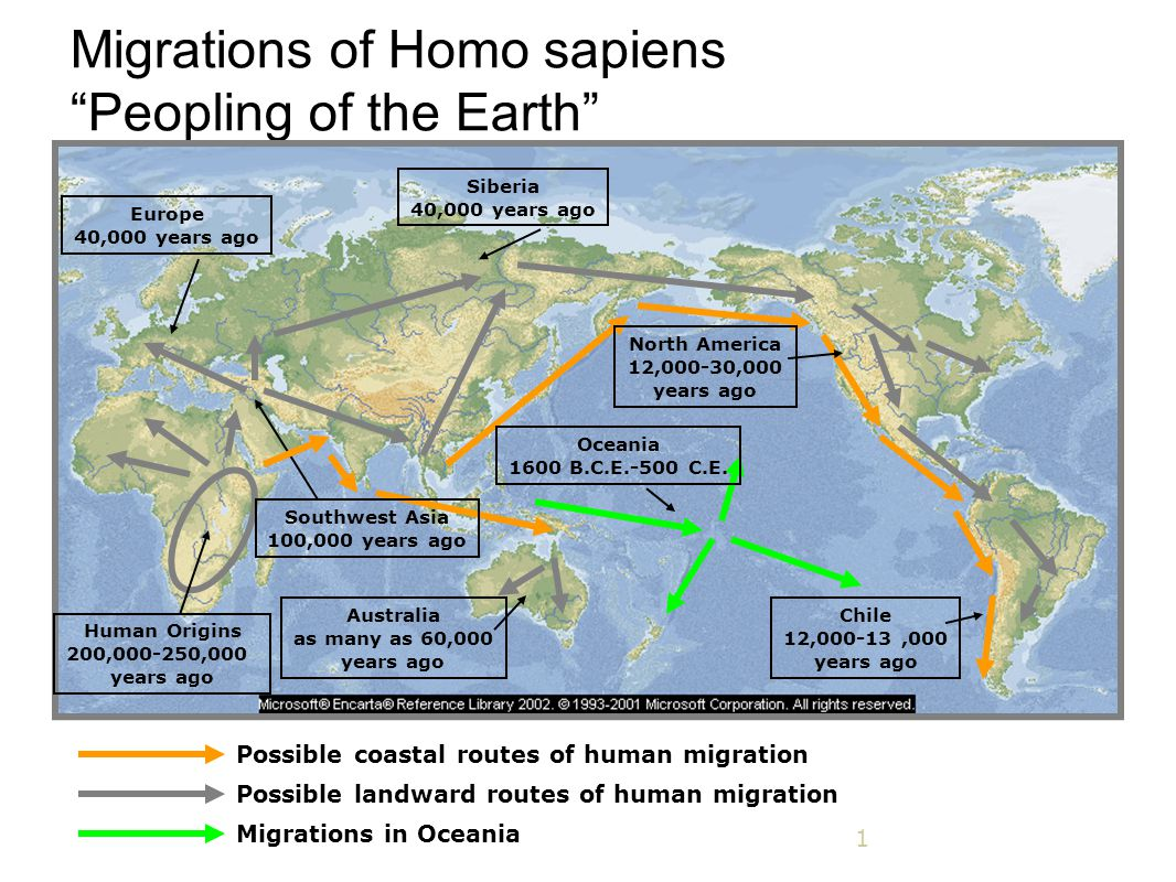 Migrations of Homo sapiens Peopling of the Earth
