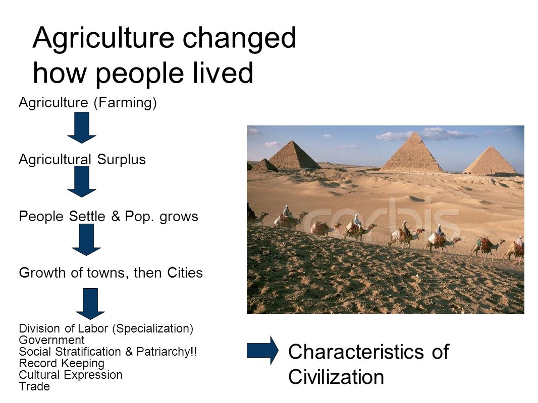 Agriculture changed how people lived