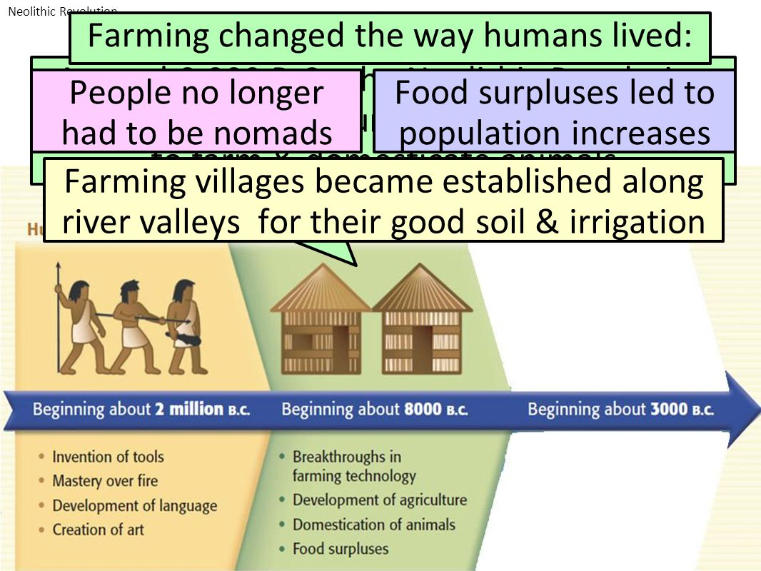 Farming changed the way humans lived:
