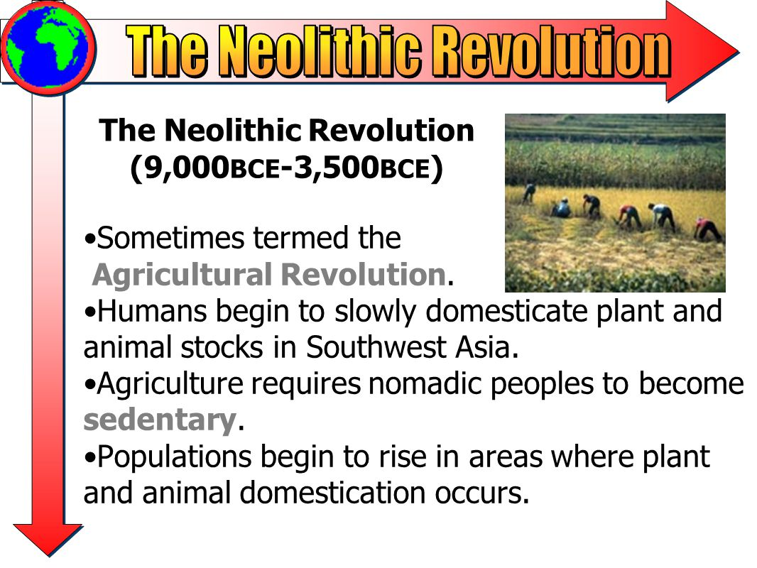 neolithic revolution thematic essay Anchor paper – thematic essay—level 4 – a anchor level 4-a the response: develops all aspects of the task for the neolithic revolution and the industrial revolution is both descriptive and analytical (permanent settlements made the years not so hard on everyone new technology led to increased.
