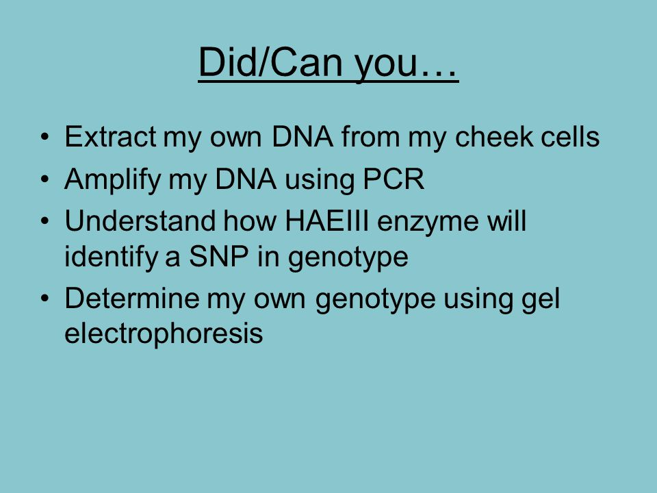 Did/Can you… Extract my own DNA from my cheek cells