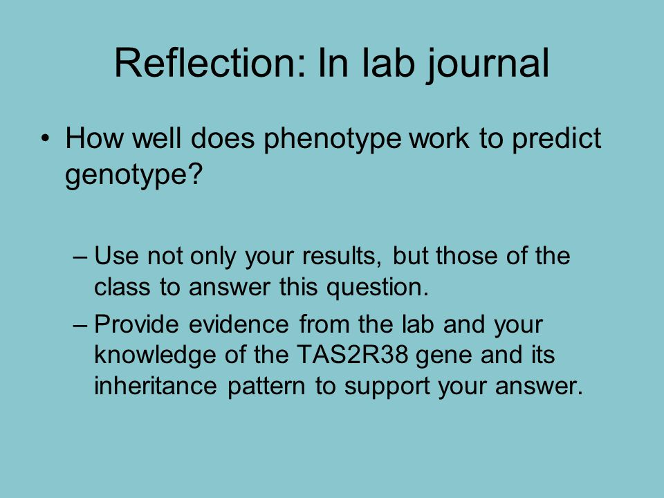 Reflection: In lab journal