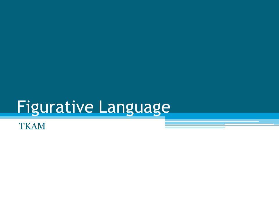 Figurative Language TKAM