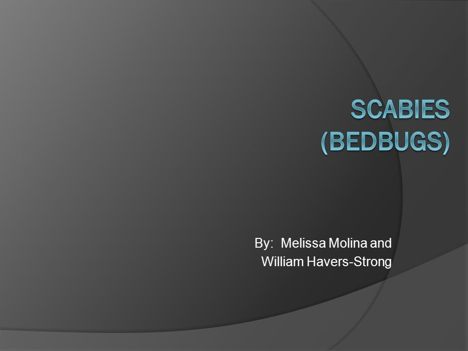 By: Melissa Molina and William Havers-Strong