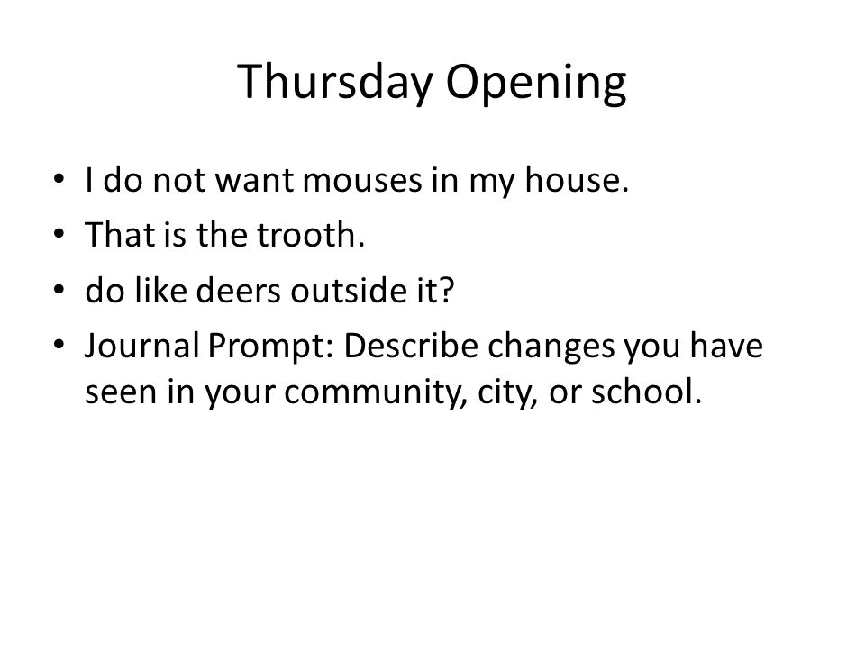 Thursday Opening I do not want mouses in my house. That is the trooth.