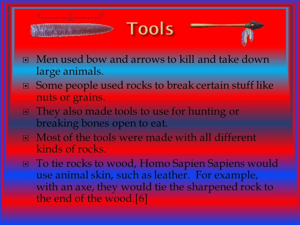 Tools Men used bow and arrows to kill and take down large animals.