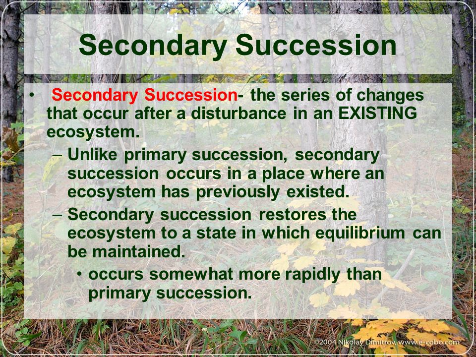 ecological succession a result of changes in the ecosystems Stability in an ecosystem the result is extinction ecological factors which can affect ecosystems are.