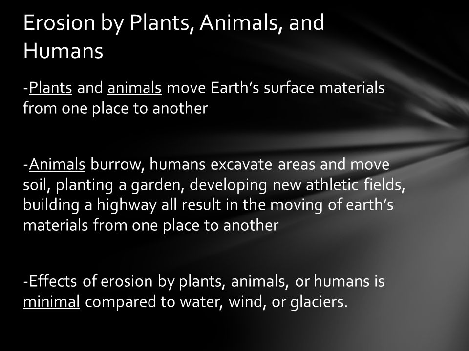Erosion by Plants, Animals, and Humans