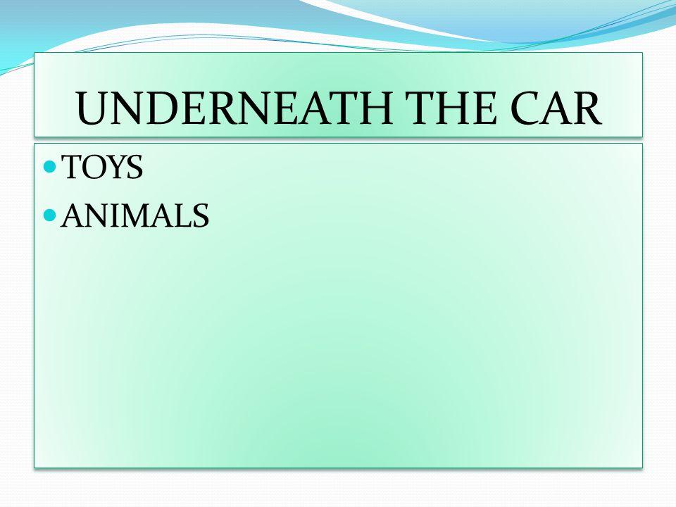 UNDERNEATH THE CAR TOYS ANIMALS