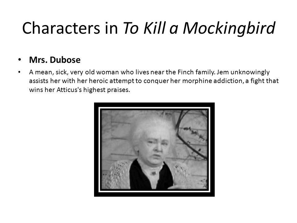 to kill a mocking bird mrs Album to kill a mockingbird  mrs dubose lived two doors up the street from us  to kill a mockingbird - chapter 27.