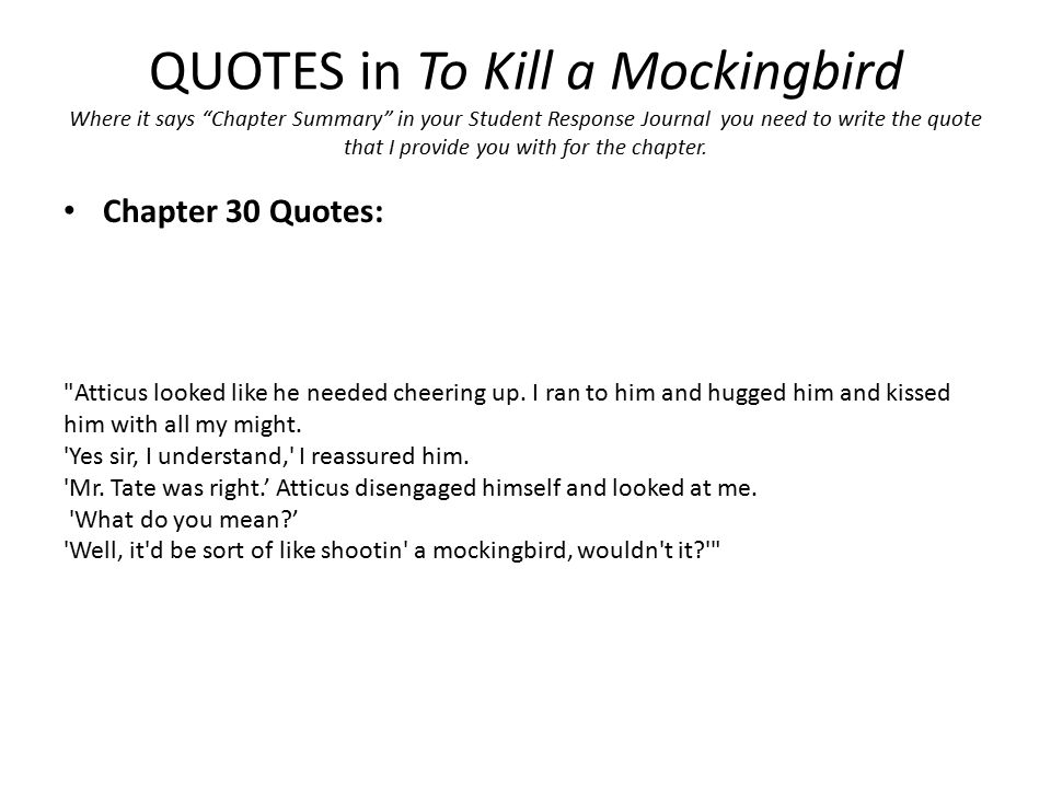 to kill a mockingbird literary analysis Struggling with harper lee's to kill a mockingbird check out our thorough summary and analysis of this literary masterpiece.