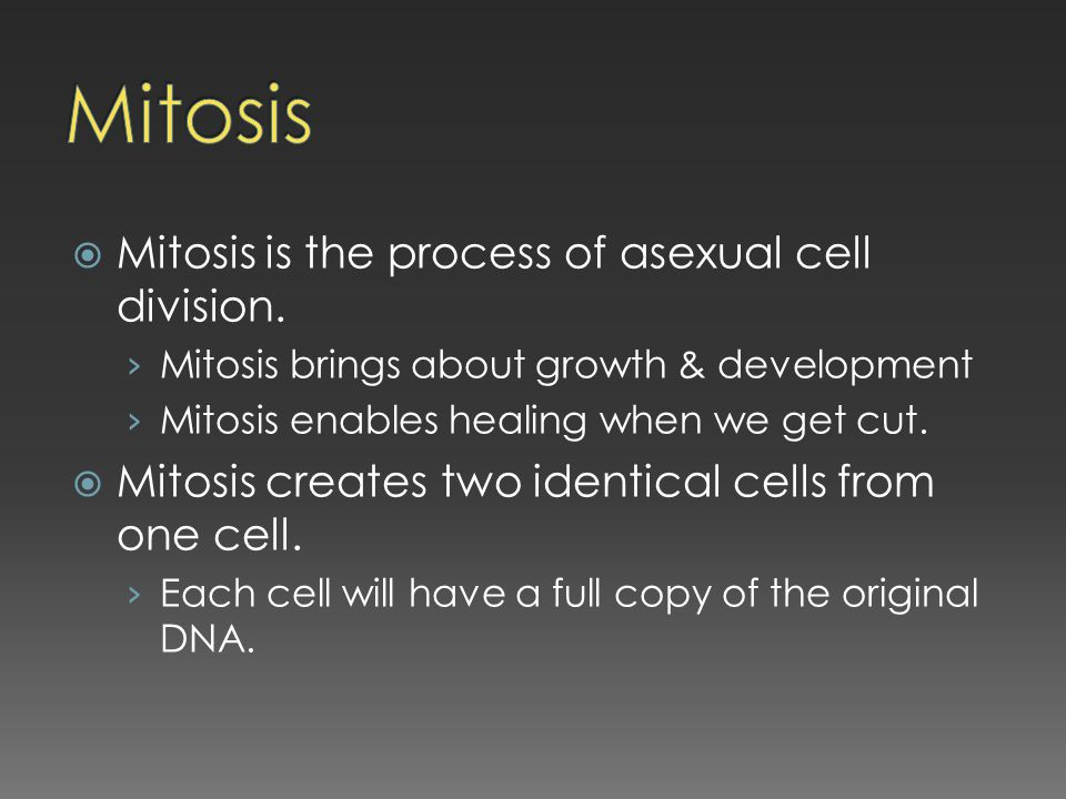 Mitosis Mitosis is the process of asexual cell division.