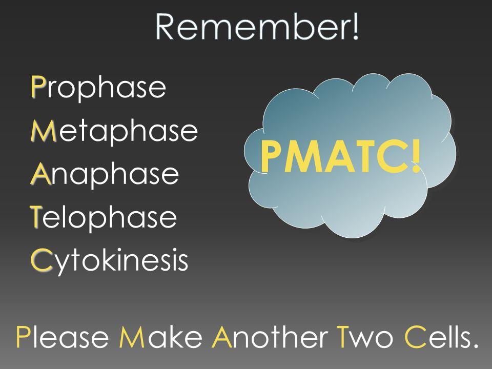 PMATC! Remember! Prophase Metaphase Anaphase Telophase Cytokinesis