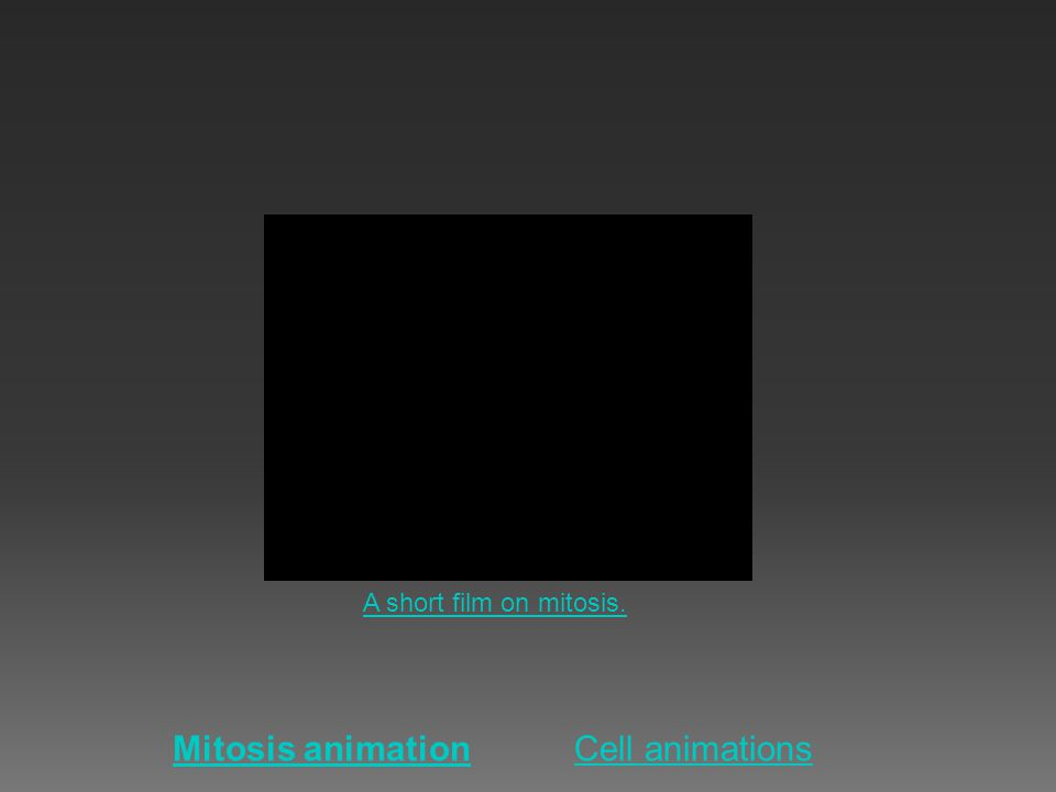 A short film on mitosis. Mitosis animation Cell animations