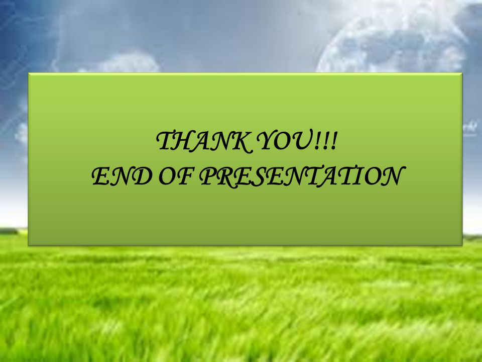 THANK YOU!!! END OF PRESENTATION