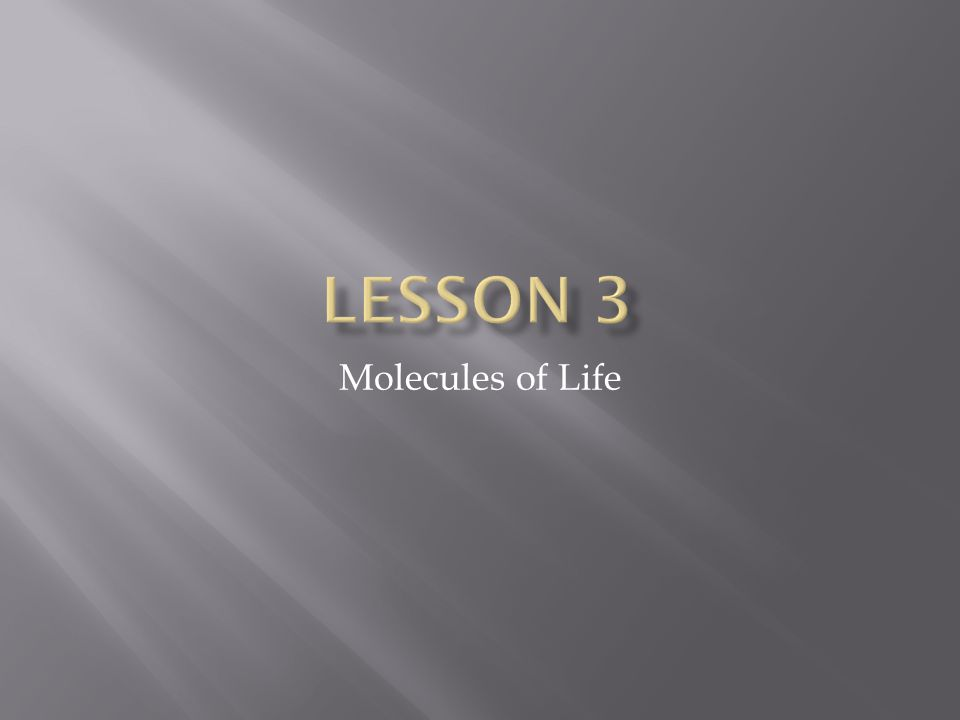 Lesson 3 Molecules of Life