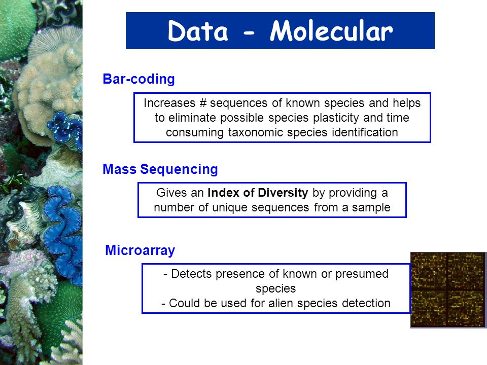 Data - Molecular Bar-coding Mass Sequencing Microarray