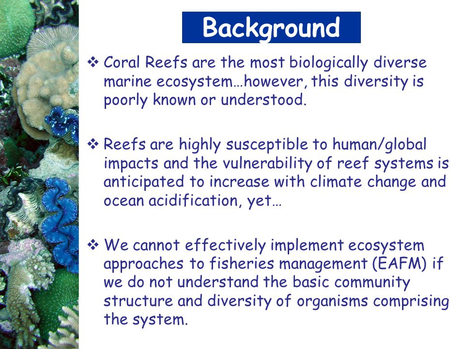 Background Coral Reefs are the most biologically diverse marine ecosystem…however, this diversity is poorly known or understood.