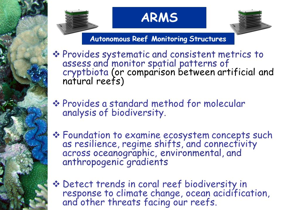 Autonomous Reef Monitoring Structures