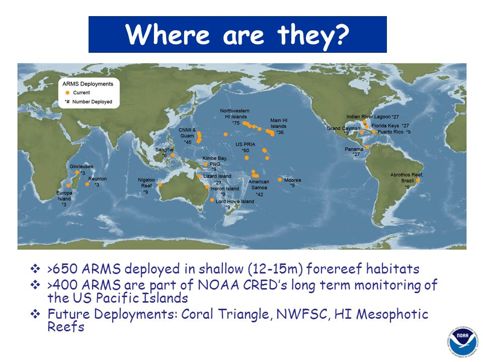 Where are they >650 ARMS deployed in shallow (12-15m) forereef habitats.
