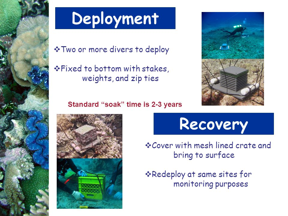 Deployment Recovery Two or more divers to deploy