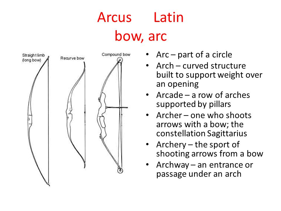 Arcus Latin bow, arc Arc – part of a circle