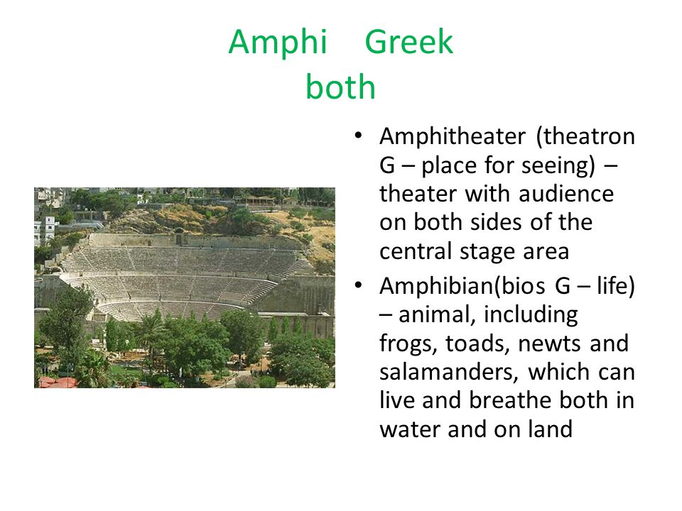 Amphi Greek both Amphitheater (theatron G – place for seeing) – theater with audience on both sides of the central stage area.