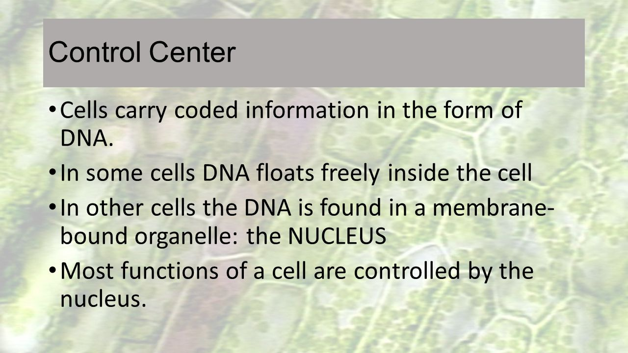 Control Center Cells carry coded information in the form of DNA.