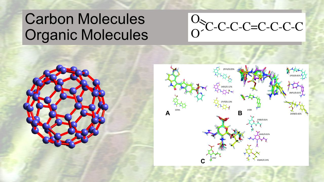 Carbon Molecules Organic Molecules