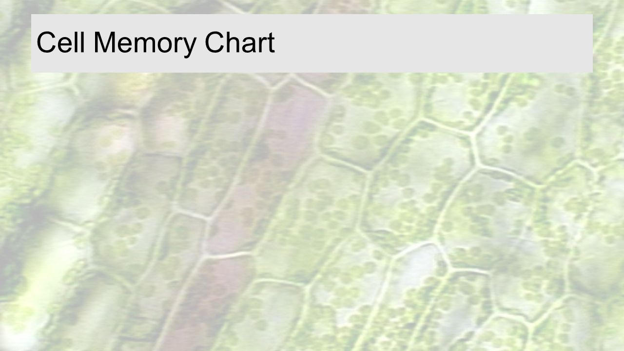 Cell Memory Chart From Science Spot