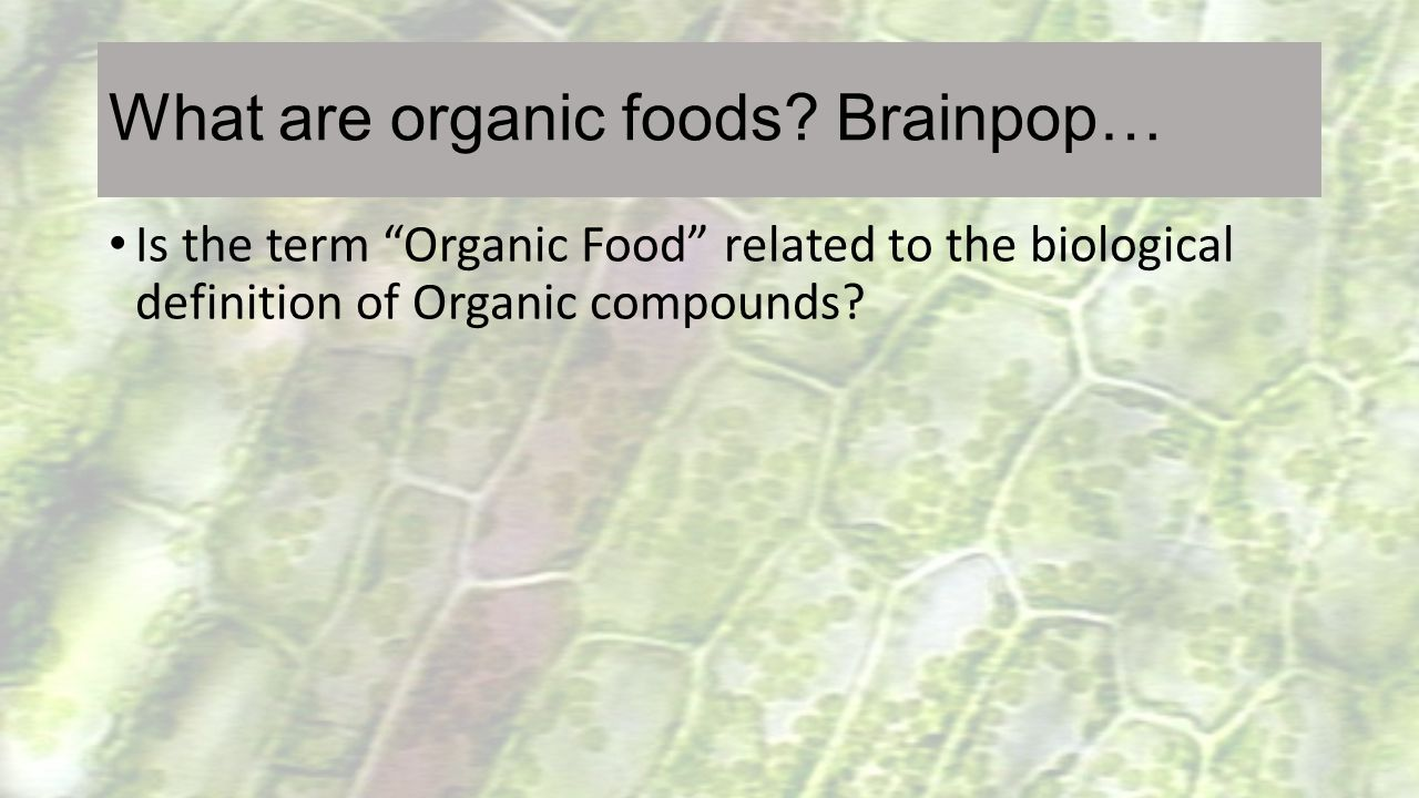 What are organic foods Brainpop…