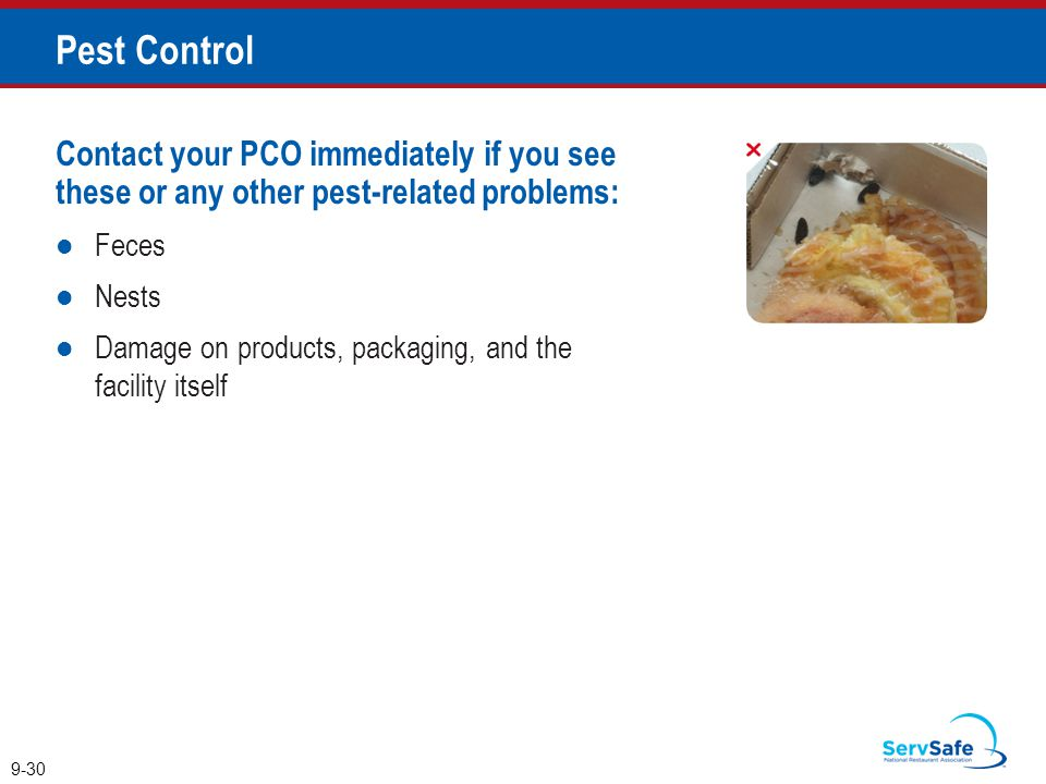 Pest Control Contact your PCO immediately if you see these or any other pest-related problems: Feces.