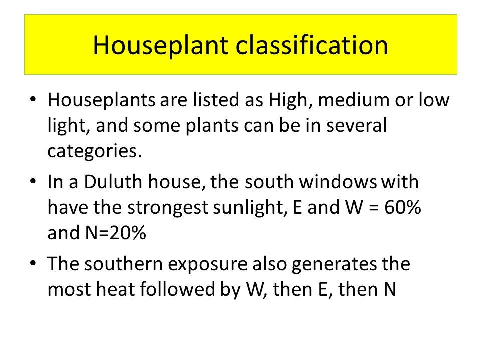 Houseplant classification