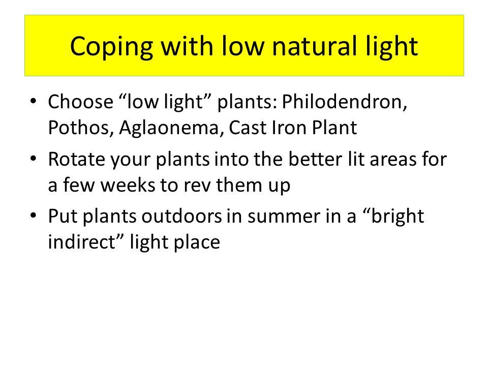 Coping with low natural light