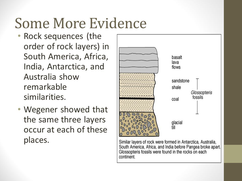 Some More Evidence Rock sequences (the order of rock layers) in South America, Africa, India, Antarctica, and Australia show remarkable similarities.