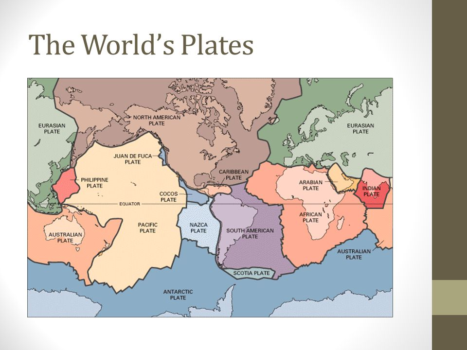 The World's Plates