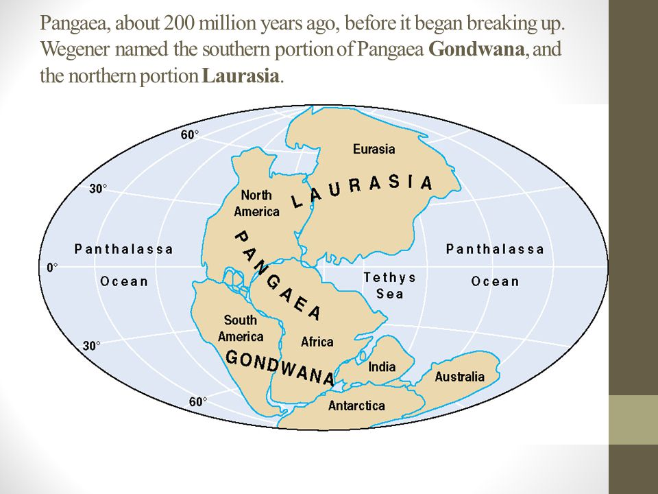 Pangaea, about 200 million years ago, before it began breaking up