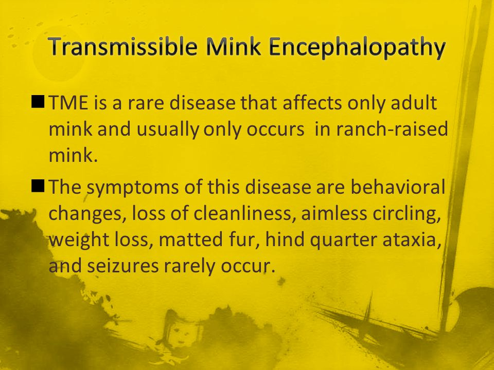 Transmissible Mink Encephalopathy