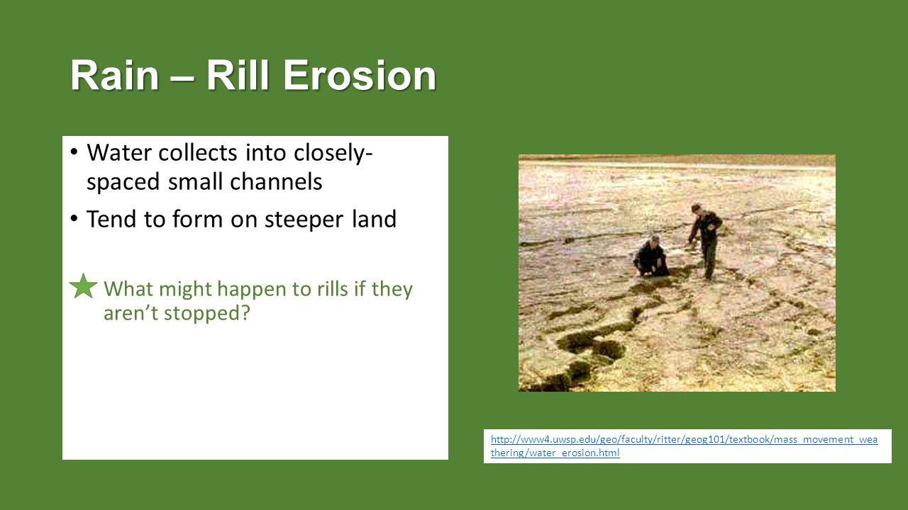 Rain – Rill Erosion Water collects into closely- spaced small channels