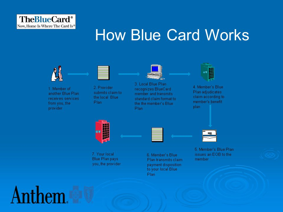 How Blue Card Works