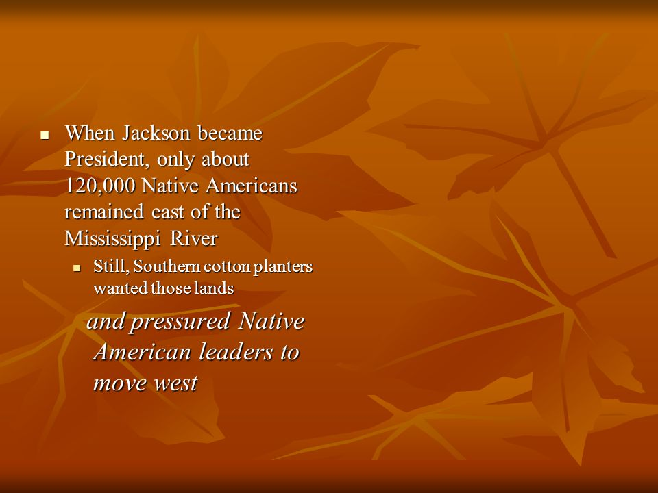When Jackson became President, only about 120,000 Native Americans remained east of the Mississippi River