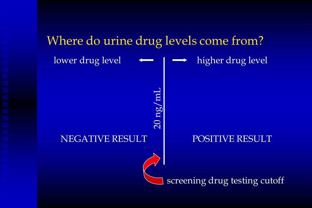 Where do urine drug levels come from