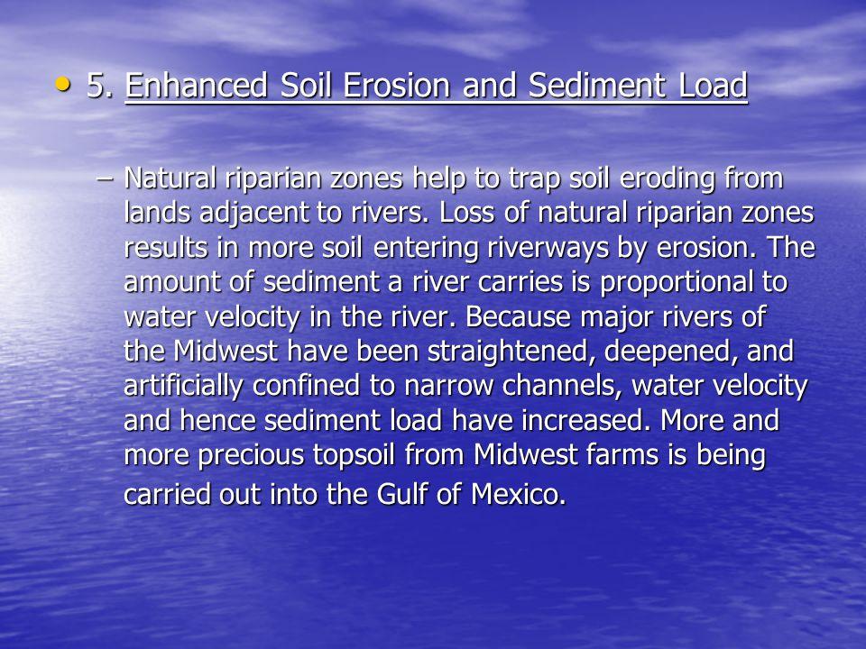 5. Enhanced Soil Erosion and Sediment Load