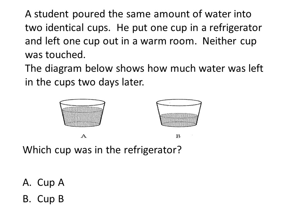 Which cup was in the refrigerator Cup A Cup B