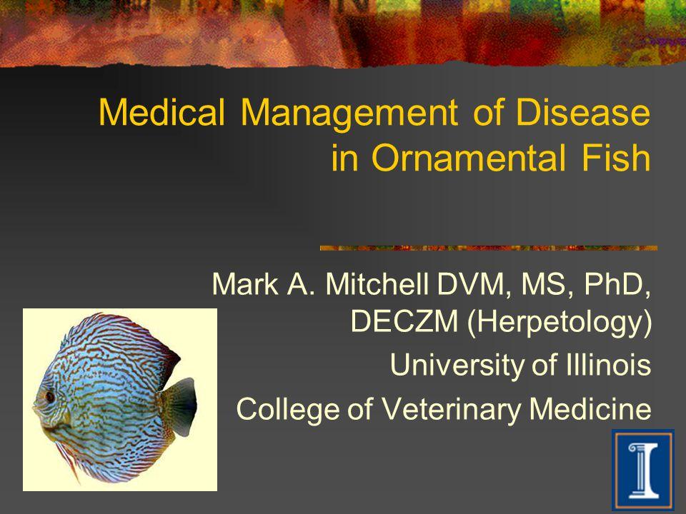 Medical Management of Disease in Ornamental Fish