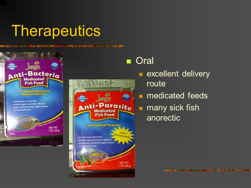 Therapeutics Oral excellent delivery route medicated feeds