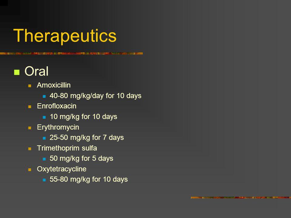 Therapeutics Oral Amoxicillin 40-80 mg/kg/day for 10 days Enrofloxacin